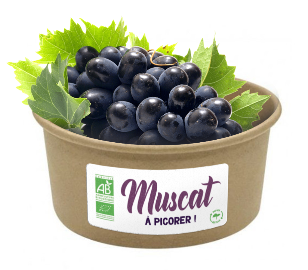 MIUSCAT